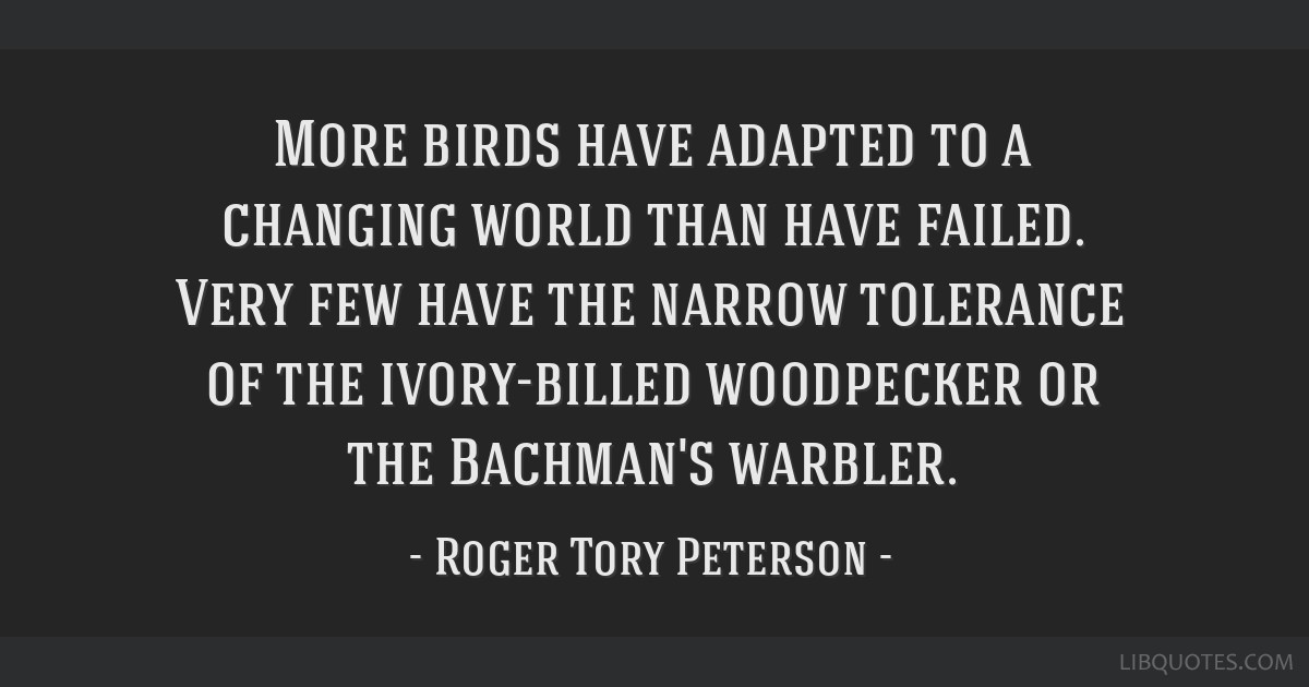More birds have adapted to a changing world than have failed. Very few have the narrow tolerance of the ivory-billed woodpecker or the Bachman's...