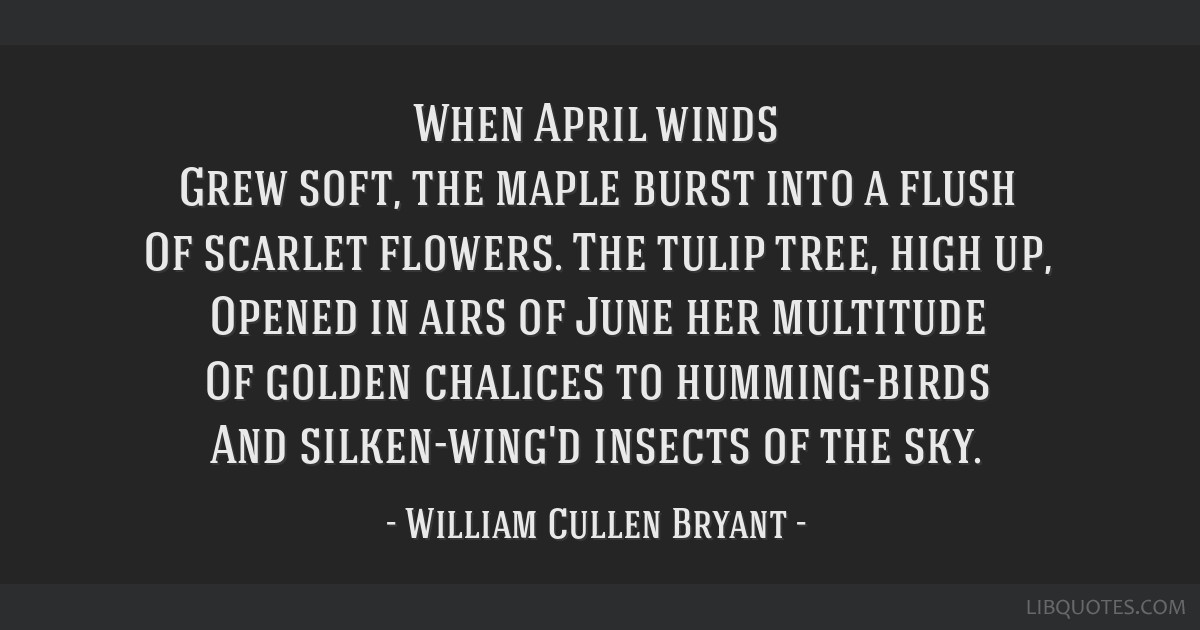 When April winds Grew soft, the maple burst into a flush Of scarlet flowers. The tulip tree, high up, Opened in airs of June her multitude Of golden...