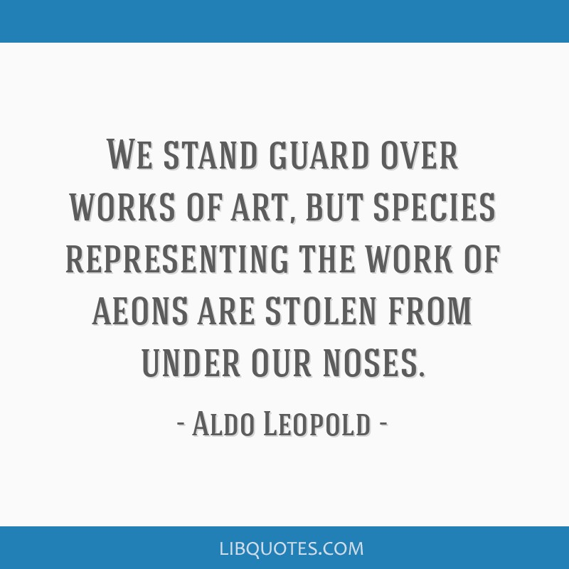 We stand guard over works of art, but species representing the work of aeons are stolen from under our noses.
