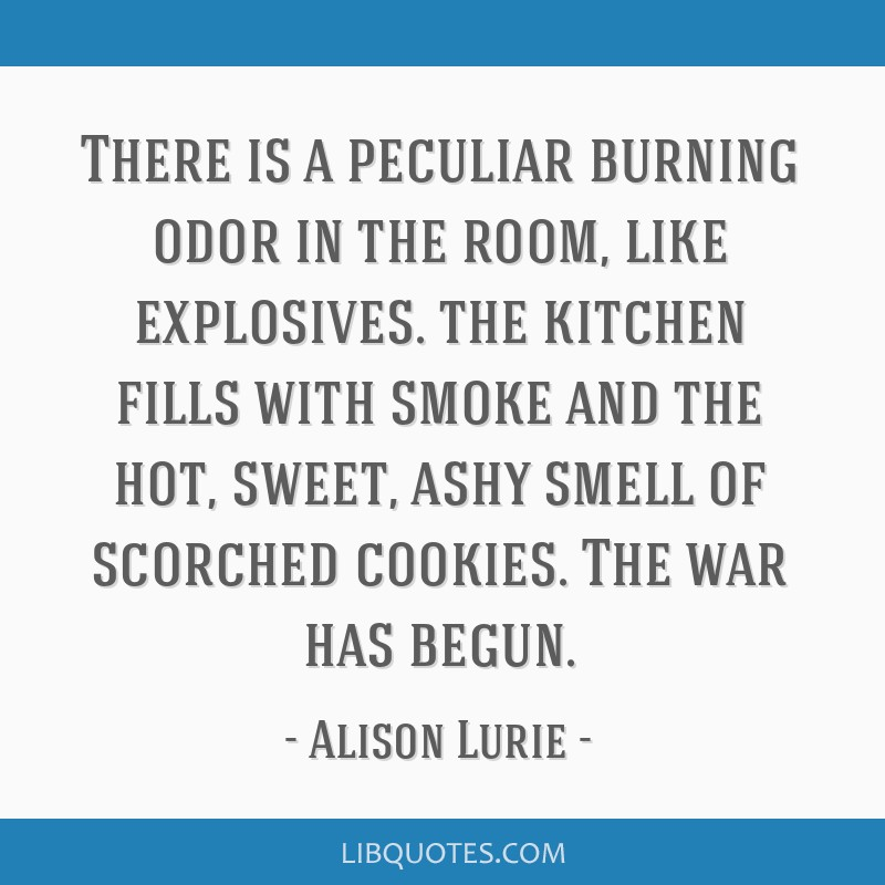 There is a peculiar burning odor in the room, like explosives. the kitchen fills with smoke and the hot, sweet, ashy smell of scorched cookies. The...