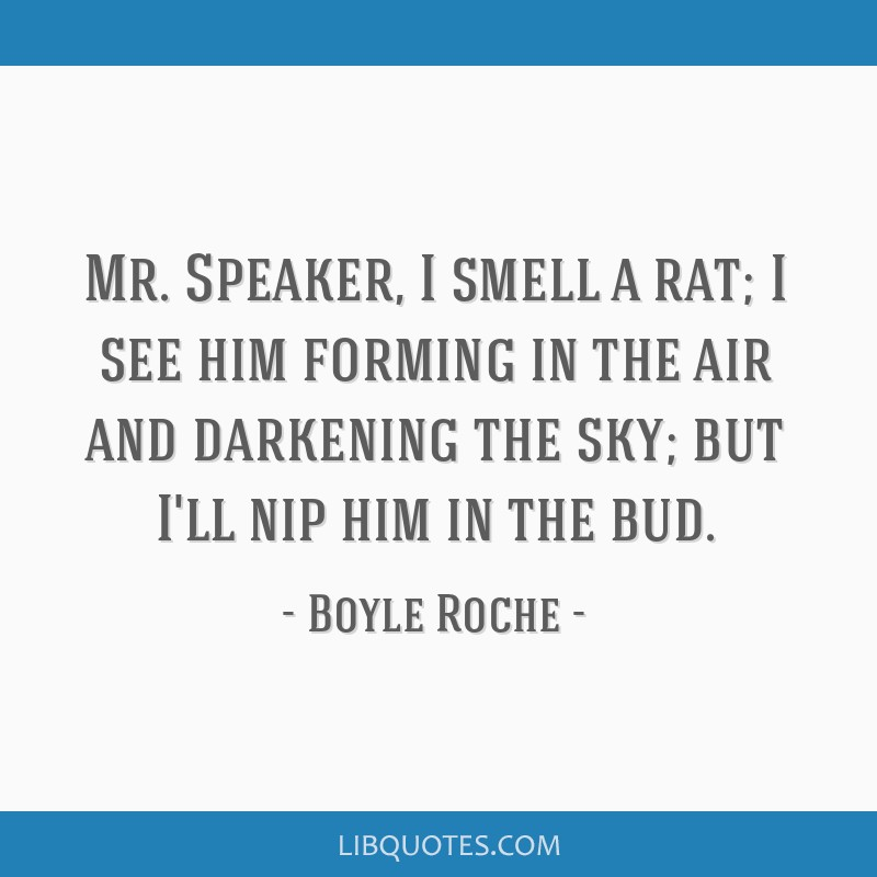 Mr. Speaker, I smell a rat; I see him forming in the air and darkening the sky; but I'll nip him in the bud.