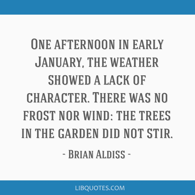 One afternoon in early January, the weather showed a lack of character. There was no frost nor wind: the trees in the garden did not stir.