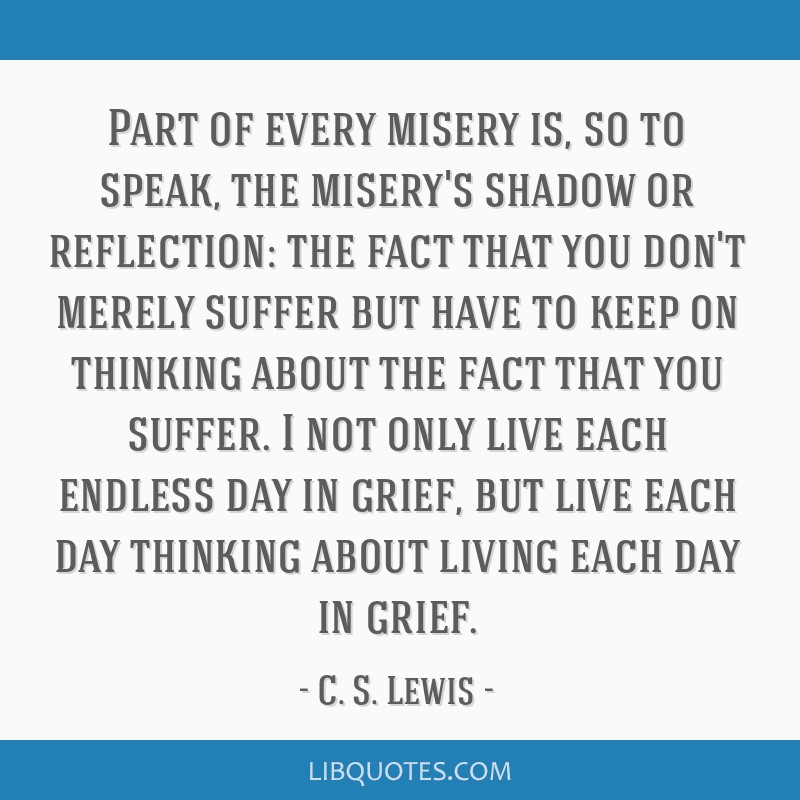 Part of every misery is, so to speak, the misery's shadow or reflection: the fact that you don't merely suffer but have to keep on thinking about the ...