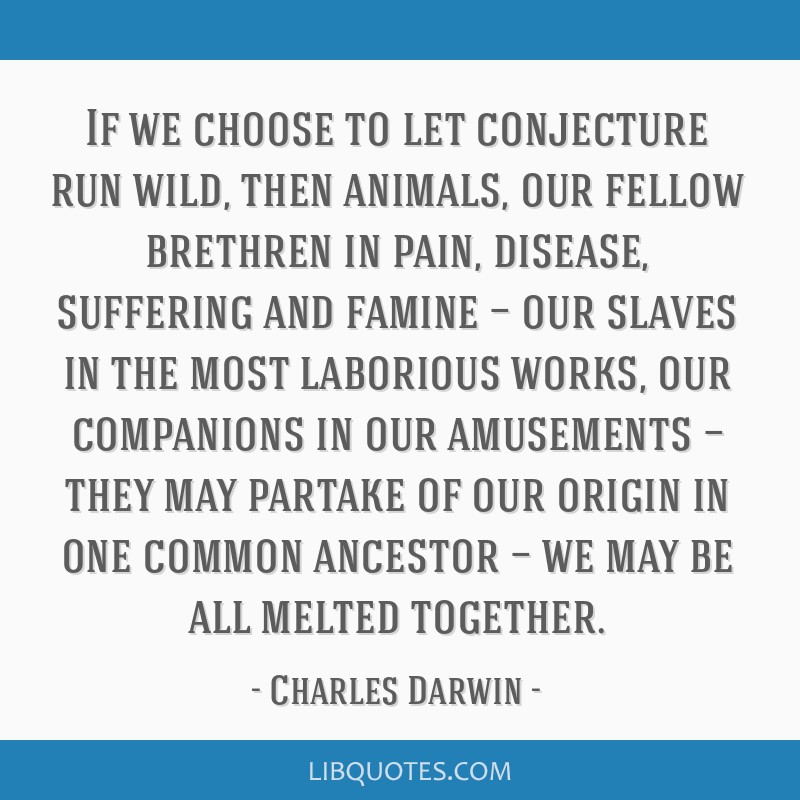 If we choose to let conjecture run wild, then animals, our fellow brethren in pain, disease, suffering and famine — our slaves in the most...