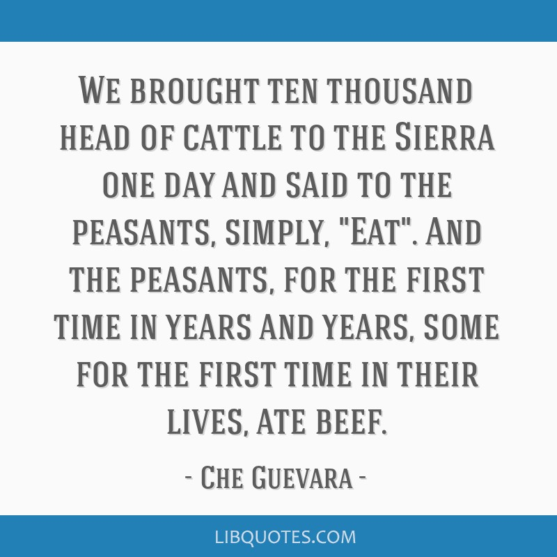 We brought ten thousand head of cattle to the Sierra one day and said to the peasants, simply, Eat. And the peasants, for the first time in years and ...
