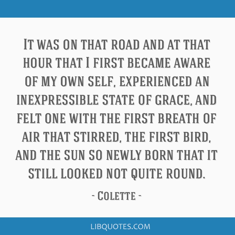 It was on that road and at that hour that I first became aware of my own self, experienced an inexpressible state of grace, and felt one with the...