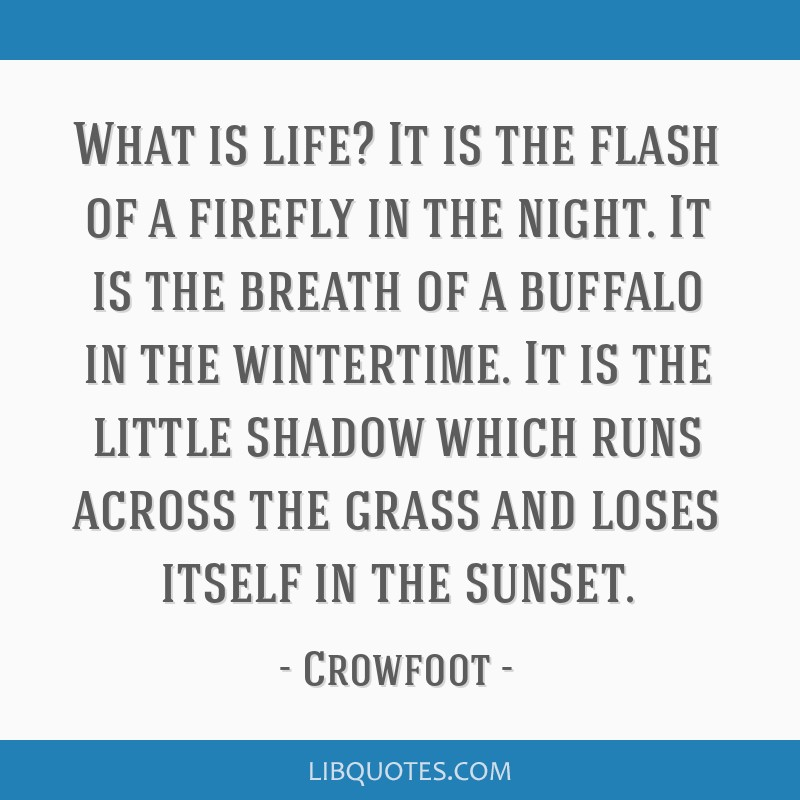 What is life? It is the flash of a firefly in the night. It is the breath of a buffalo in the wintertime. It is the little shadow which runs across...