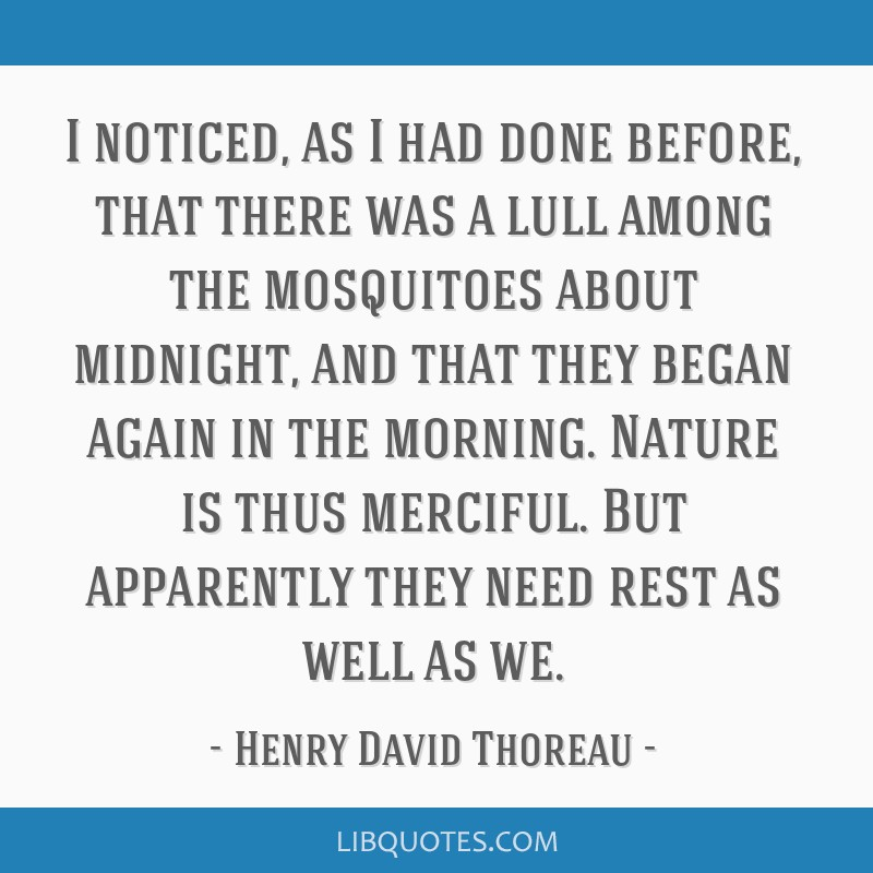 I noticed, as I had done before, that there was a lull among the mosquitoes about midnight, and that they began again in the morning. Nature is thus...