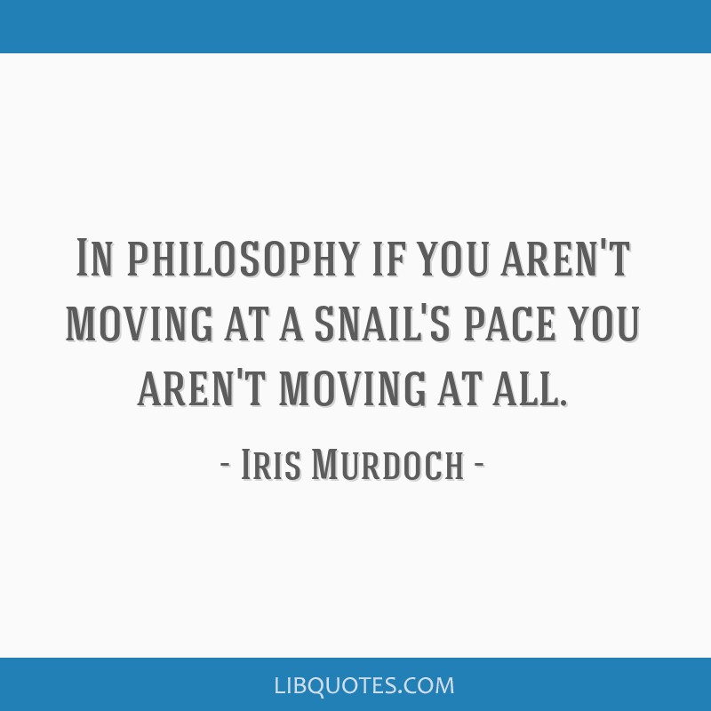 In philosophy if you aren't moving at a snail's pace you aren't moving at all.