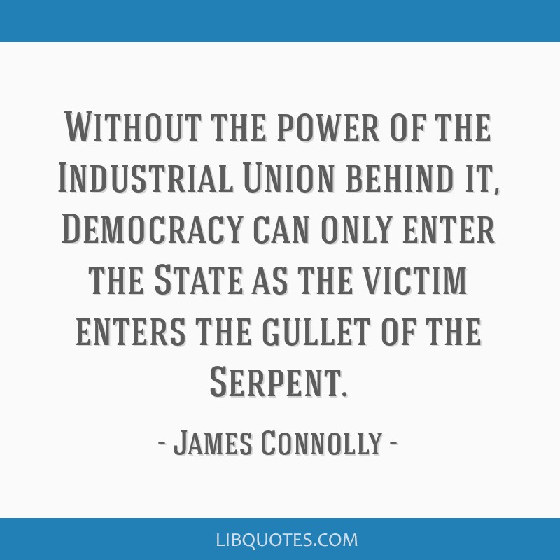 Without the power of the Industrial Union behind it, Democracy can only enter the State as the victim enters the gullet of the Serpent.