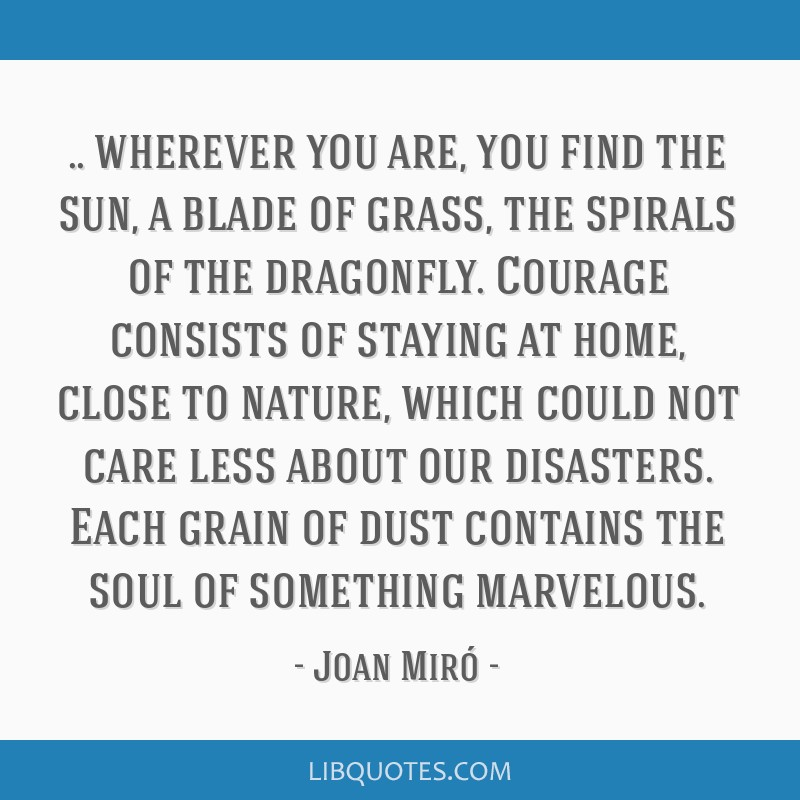 Wherever you are, you find the sun, a blade of grass, the spirals of the dragonfly. Courage consists of staying at home, close to nature, which could ...