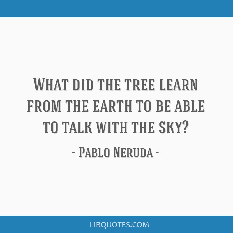 What did the tree learn from the earth to be able to talk with the sky?