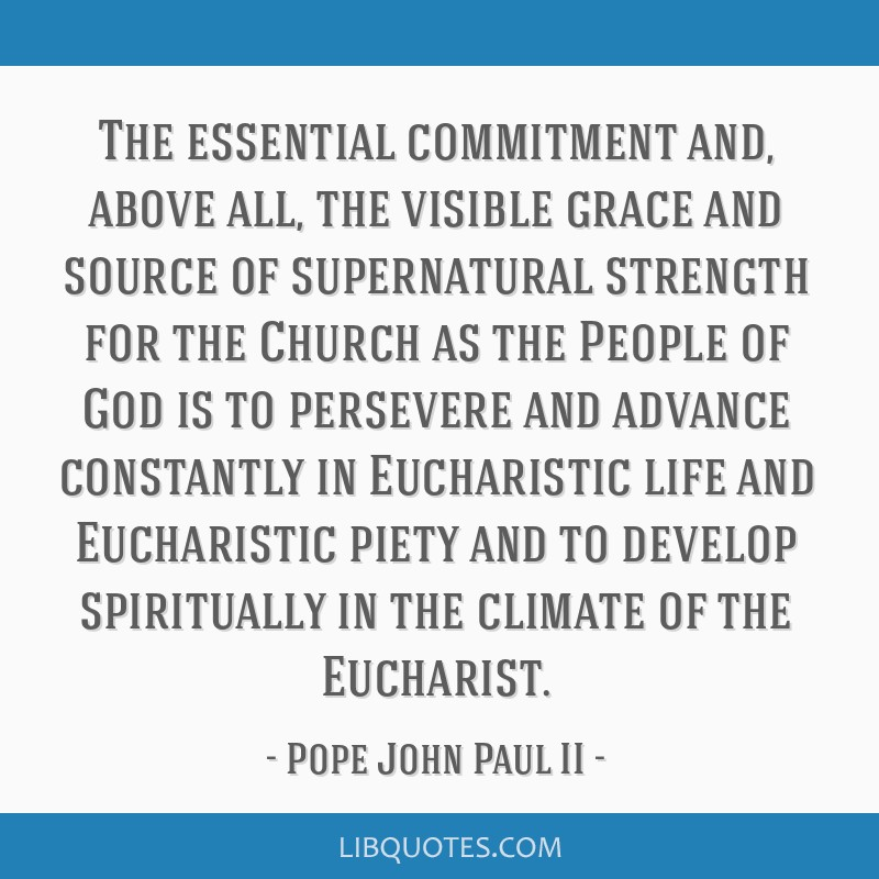 The essential commitment and, above all, the visible grace and source of supernatural strength for the Church as the People of God is to persevere...