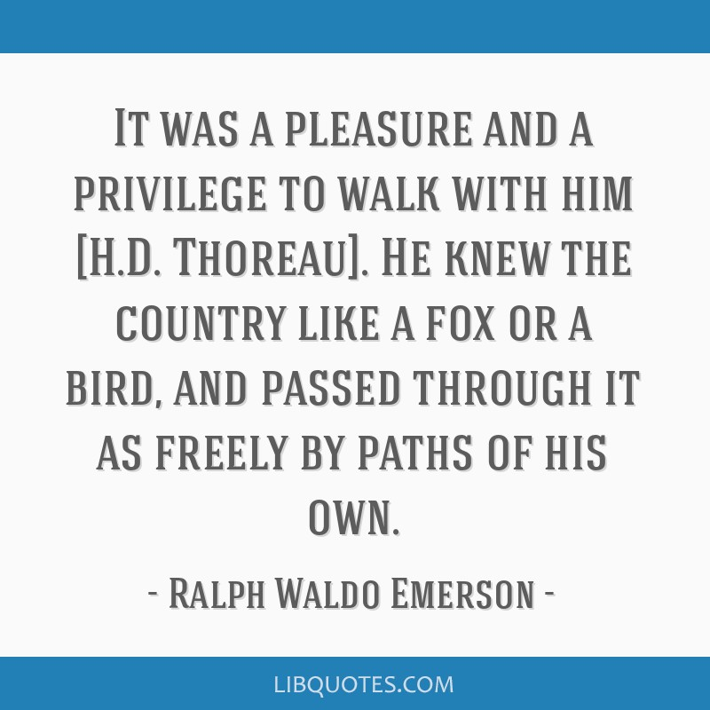 It was a pleasure and a privilege to walk with him [H.D. Thoreau]. He knew the country like a fox or a bird, and passed through it as freely by paths ...