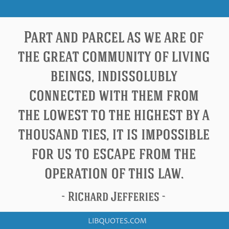 Part and parcel as we are of the great community of living beings, indissolubly connected with them from the lowest to the highest by a thousand...