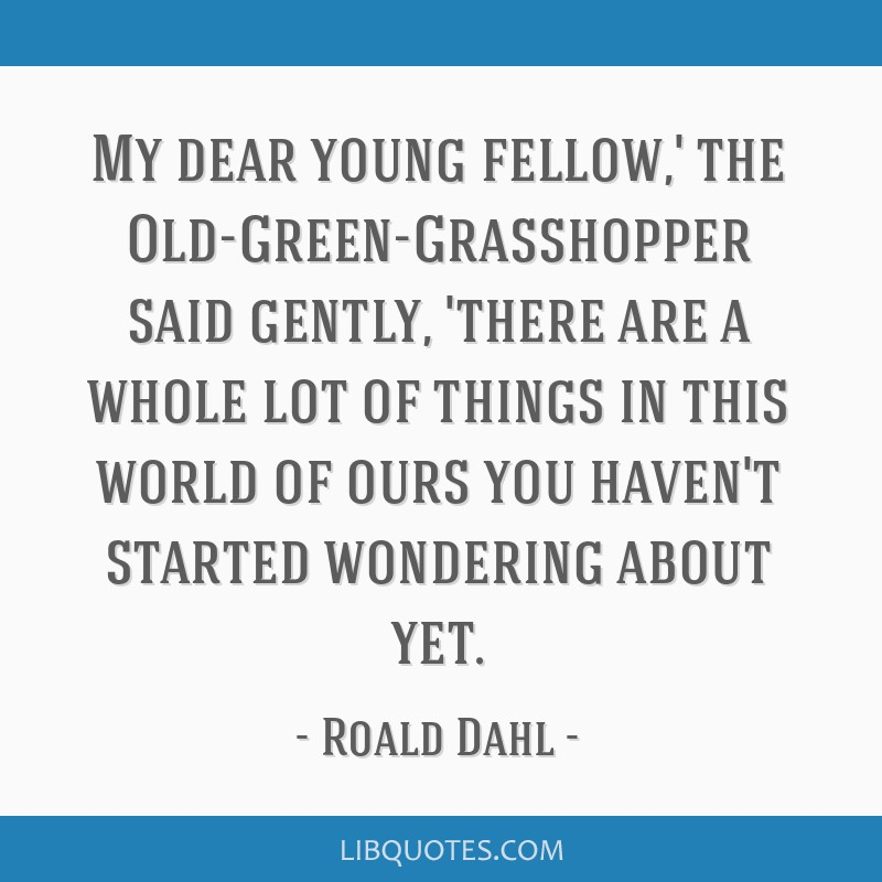 My dear young fellow,' the Old-Green-Grasshopper said gently, 'there are a whole lot of things in this world of ours you haven't started wondering...