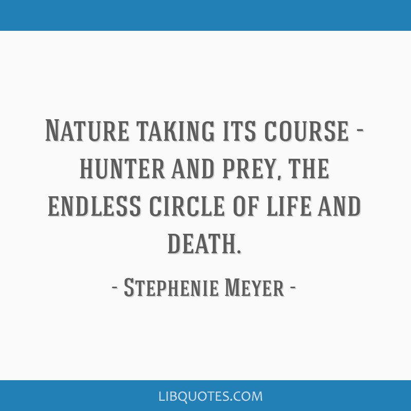 Nature Taking Its Course Hunter And Prey The Endless Circle Of
