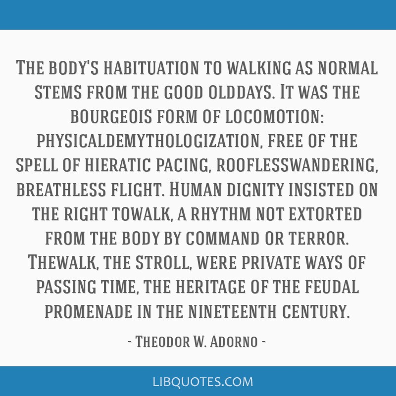 The body's habituation to walking as normal stems from the good olddays. It was the bourgeois form of locomotion: physicaldemythologization, free of...