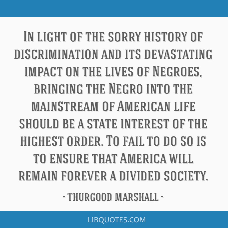 In light of the sorry history of discrimination and its devastating impact on the lives of Negroes, bringing the Negro into the mainstream of...
