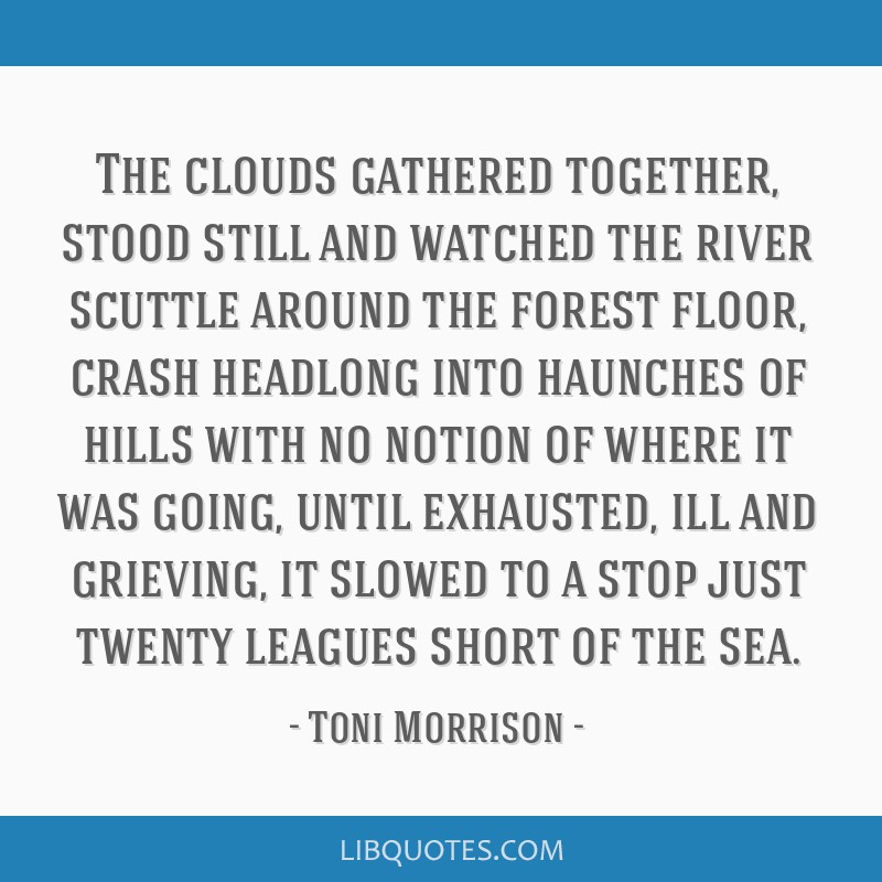 The clouds gathered together, stood still and watched the river scuttle around the forest floor, crash headlong into haunches of hills with no notion ...