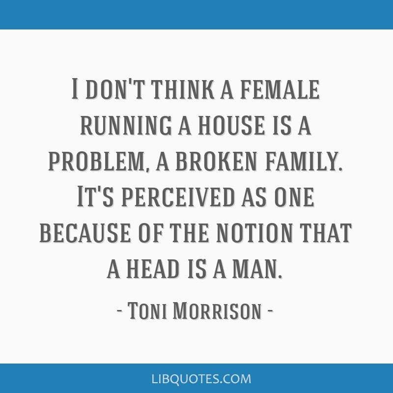 I don't think a female running a house is a problem, a broken family. It's perceived as one because of the notion that a head is a man.