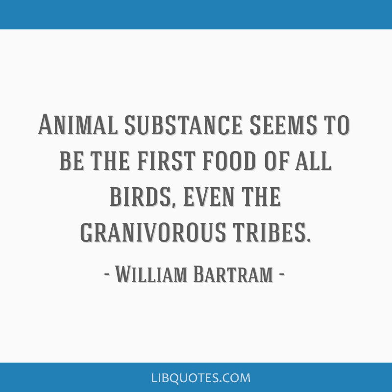 Animal substance seems to be the first food of all birds, even the granivorous tribes.
