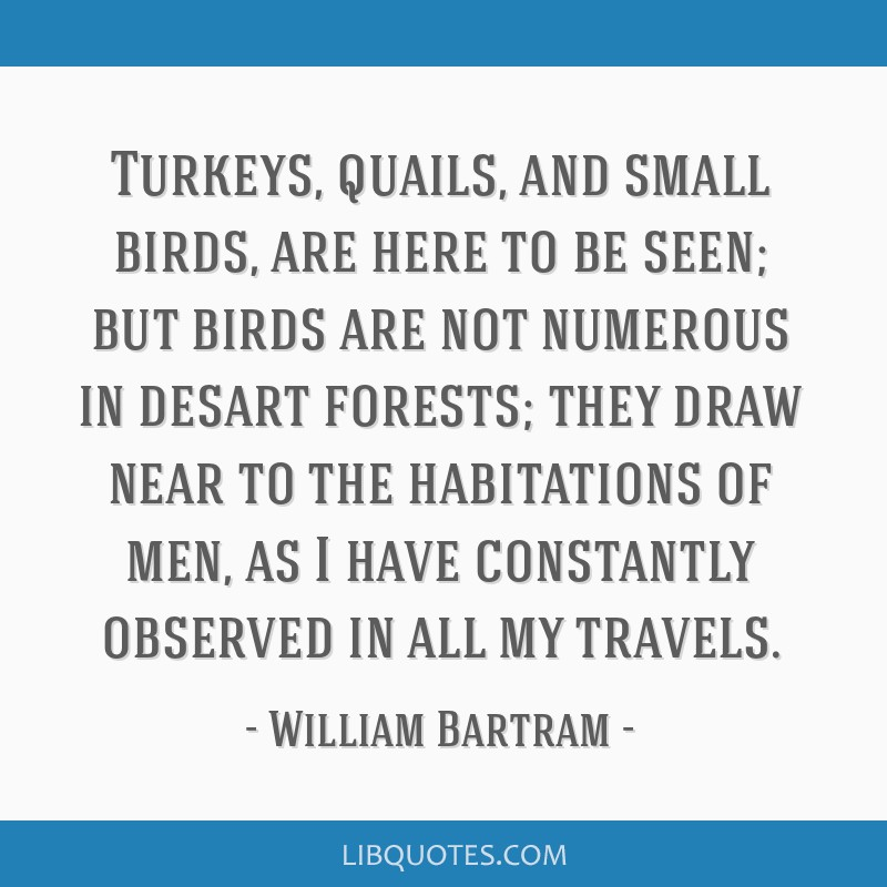 Turkeys, quails, and small birds, are here to be seen; but birds are not numerous in desart forests; they draw near to the habitations of men, as I...