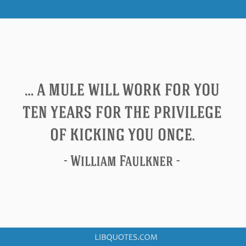 … a mule will work for you ten years for the privilege of kicking you once.
