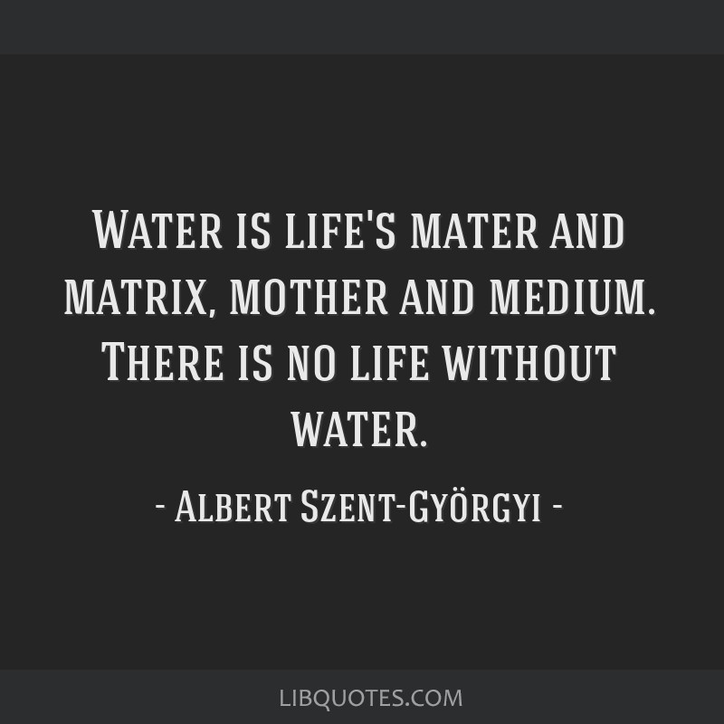 Water is life's mater and matrix, mother and medium. There is no life without water.