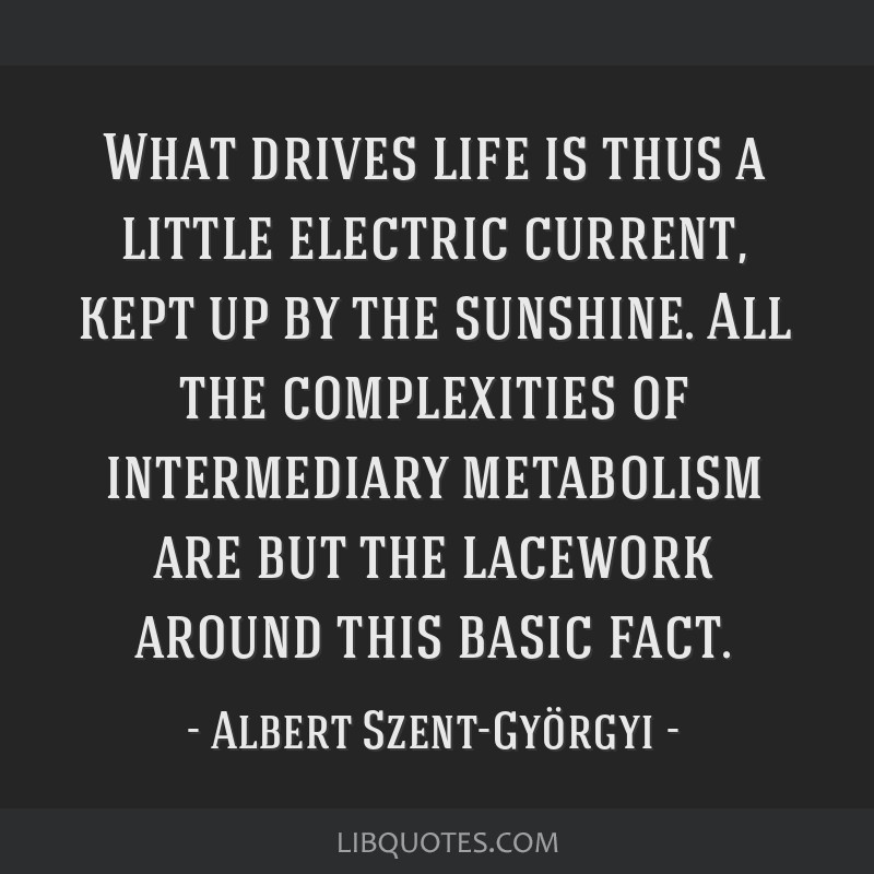 What drives life is thus a little electric current, kept up by the sunshine. All the complexities of intermediary metabolism are but the lacework...