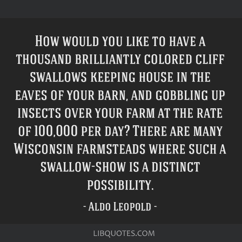 How would you like to have a thousand brilliantly colored cliff swallows keeping house in the eaves of your barn, and gobbling up insects over your...