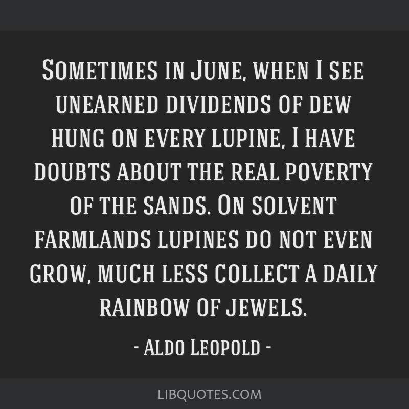 Sometimes in June, when I see unearned dividends of dew hung on every lupine, I have doubts about the real poverty of the sands. On solvent farmlands ...