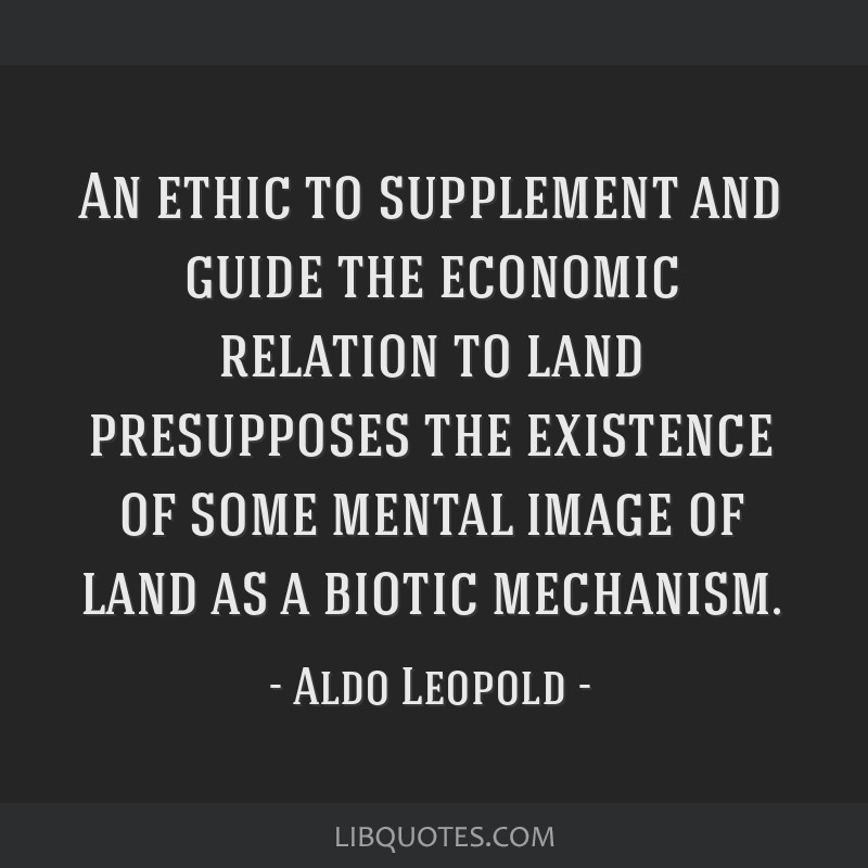 An ethic to supplement and guide the economic relation to land presupposes the existence of some mental image of land as a biotic mechanism.