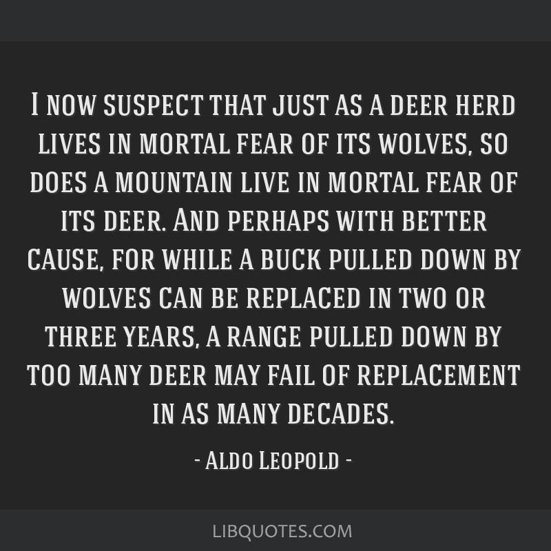 I now suspect that just as a deer herd lives in mortal fear of its wolves, so does a mountain live in mortal fear of its deer. And perhaps with...