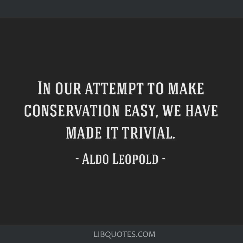 In our attempt to make conservation easy, we have made it trivial.
