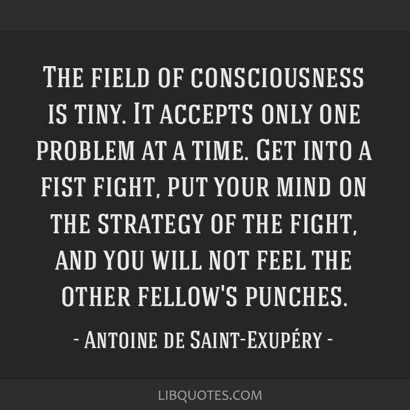 The field of consciousness is tiny. It accepts only one problem at a time. Get into a fist fight, put your mind on the strategy of the fight, and you ...