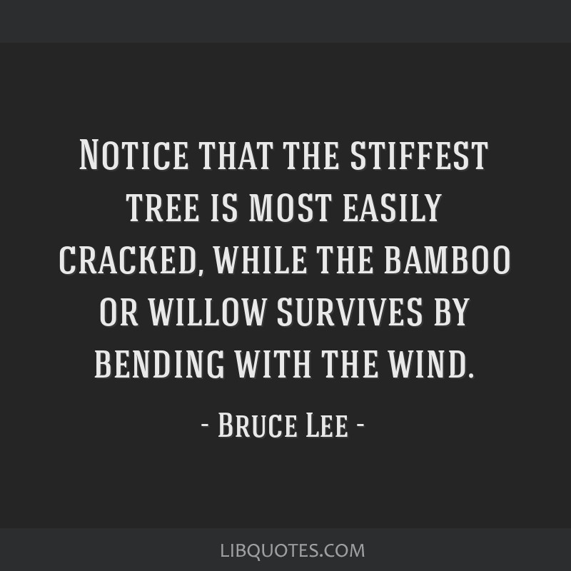 Notice that the stiffest tree is most easily cracked, while the bamboo or willow survives by bending with the wind.
