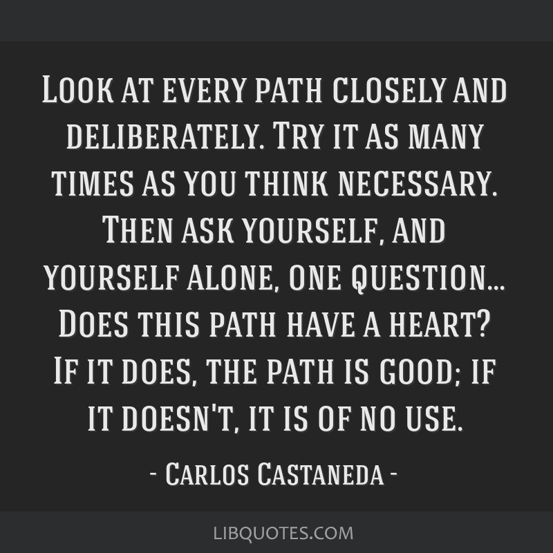 Look at every path closely and deliberately. Try it as many times as you think necessary. Then ask yourself, and yourself alone, one question... Does ...