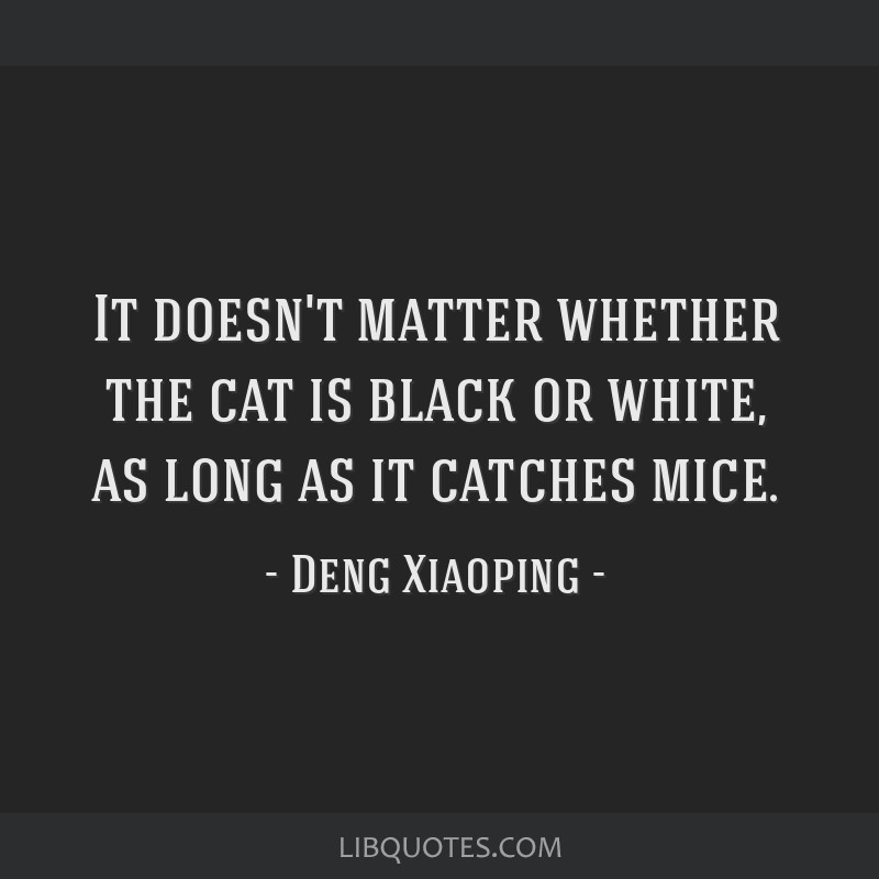 It doesn't matter whether the cat is black or white, as long as it catches mice.