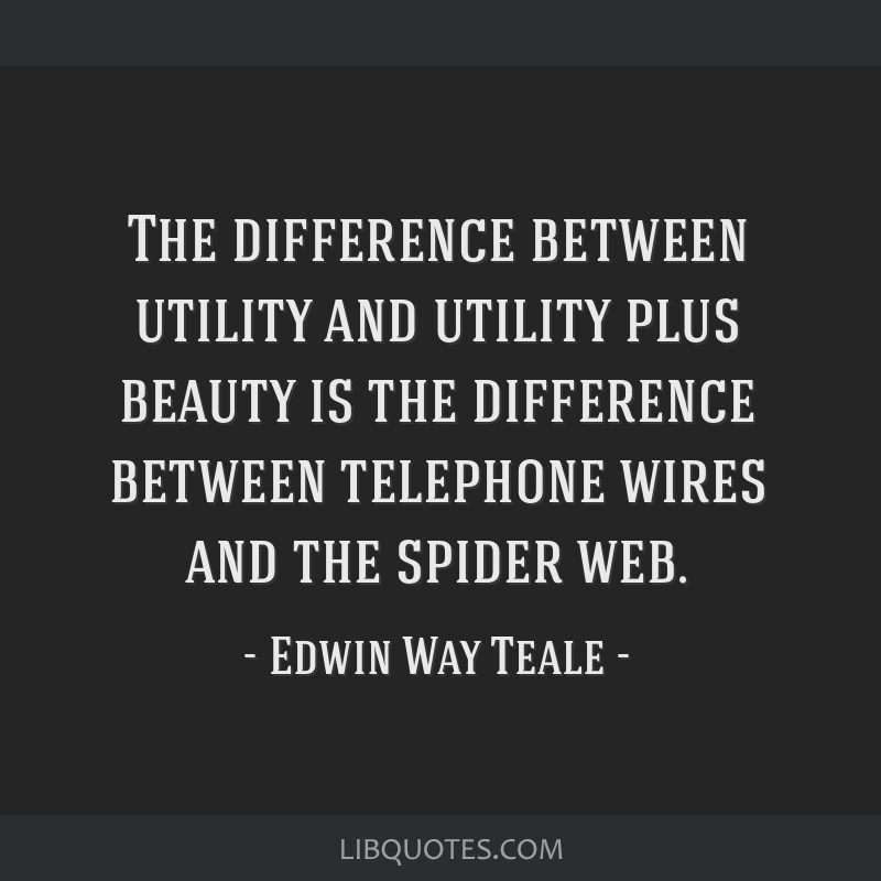 The difference between utility and utility plus beauty is the difference between telephone wires and the spider web.
