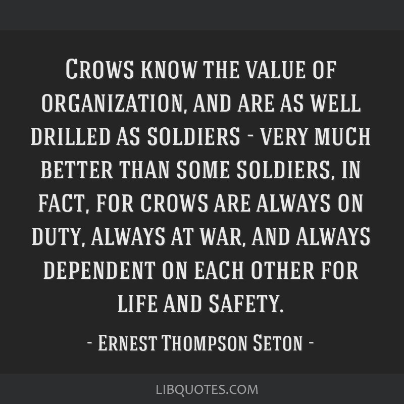 Crows know the value of organization, and are as well drilled as soldiers - very much better than some soldiers, in fact, for crows are always on...