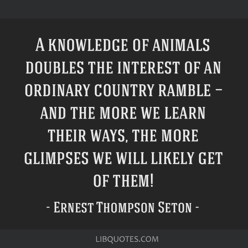 A knowledge of animals doubles the interest of an ordinary country ramble — and the more we learn their ways, the more glimpses we will likely get...