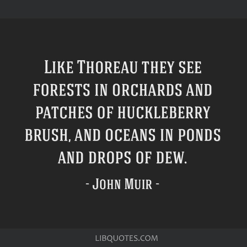 Like Thoreau they see forests in orchards and patches of huckleberry brush, and oceans in ponds and drops of dew.