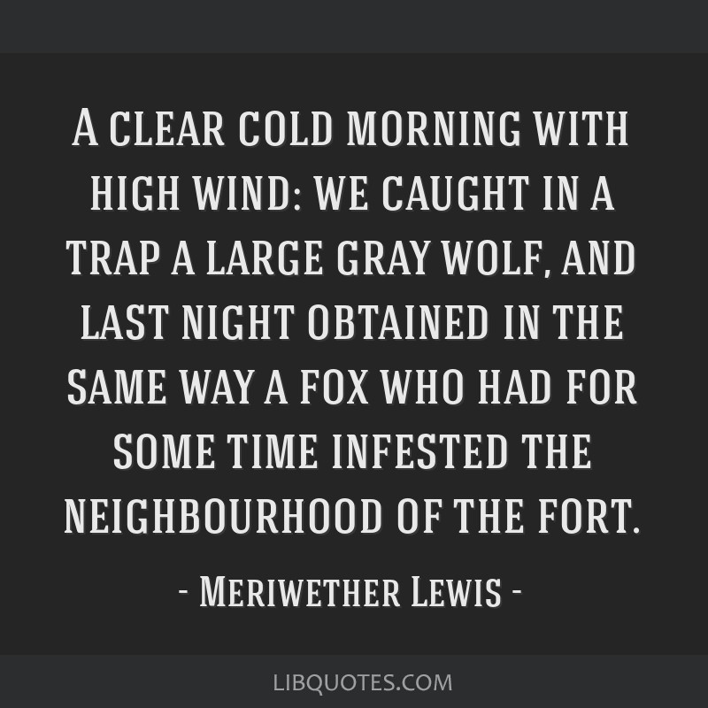 A clear cold morning with high wind: we caught in a trap a large gray wolf, and last night obtained in the same way a fox who had for some time...