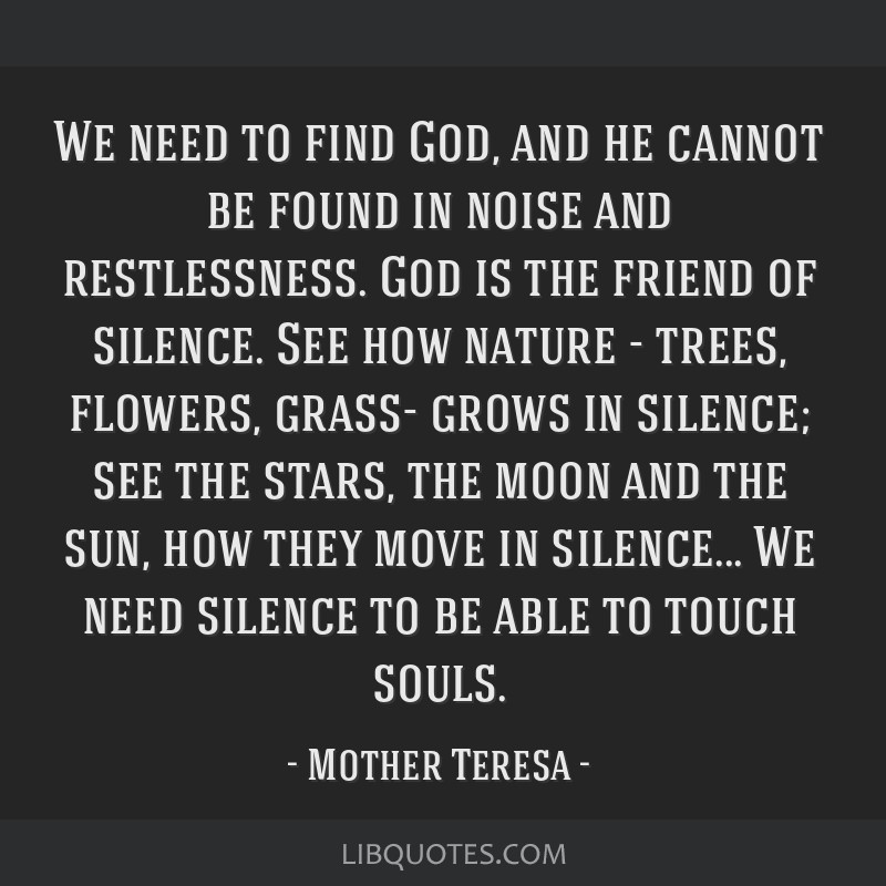 We need to find God, and he cannot be found in noise and restlessness. God is the friend of silence. See how nature - trees, flowers, grass- grows in ...