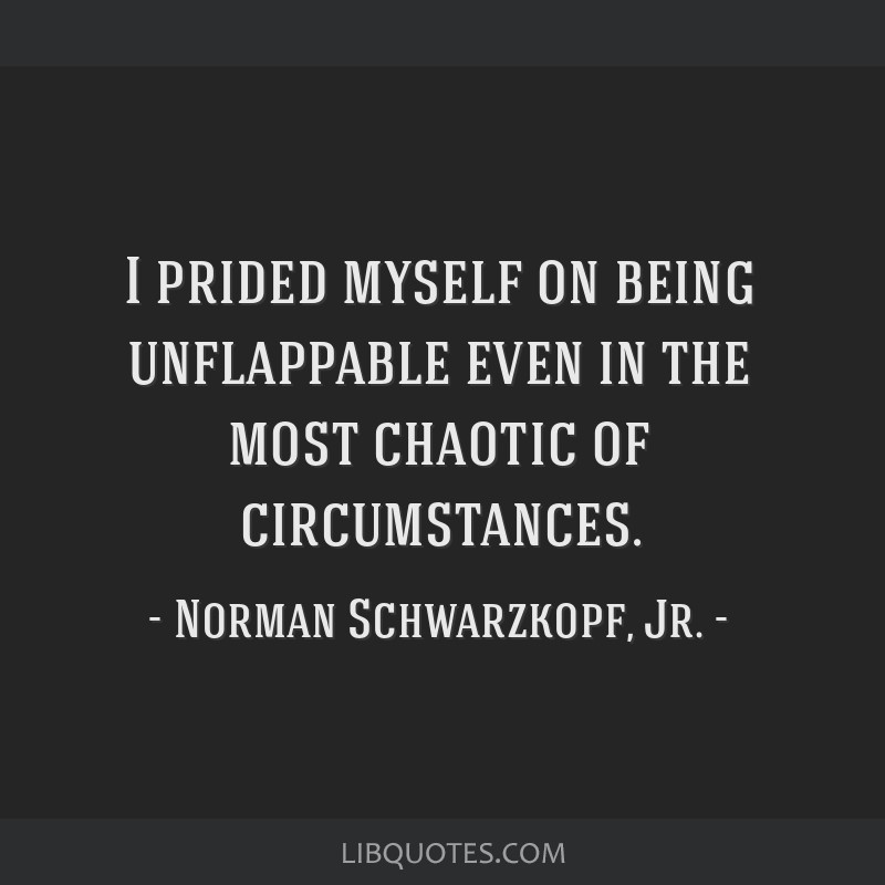 I prided myself on being unflappable even in the most chaotic of circumstances.