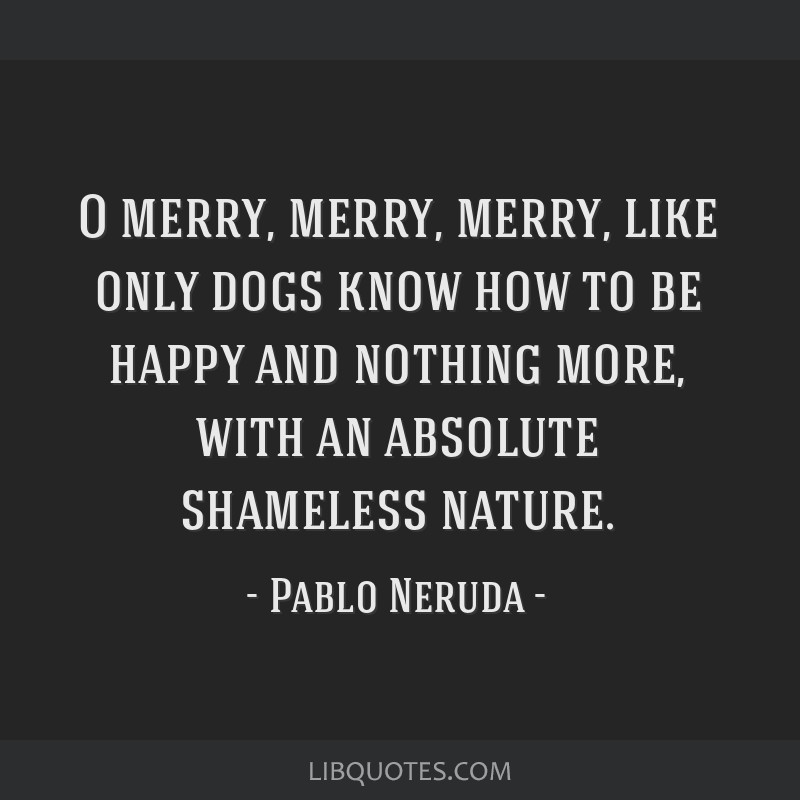 O merry, merry, merry, like only dogs know how to be happy and nothing more, with an absolute shameless nature.