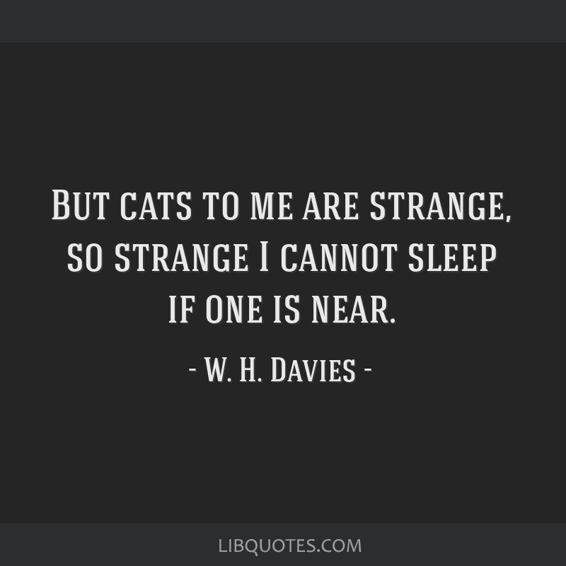 But cats to me are strange, so strange I cannot sleep if one is near.