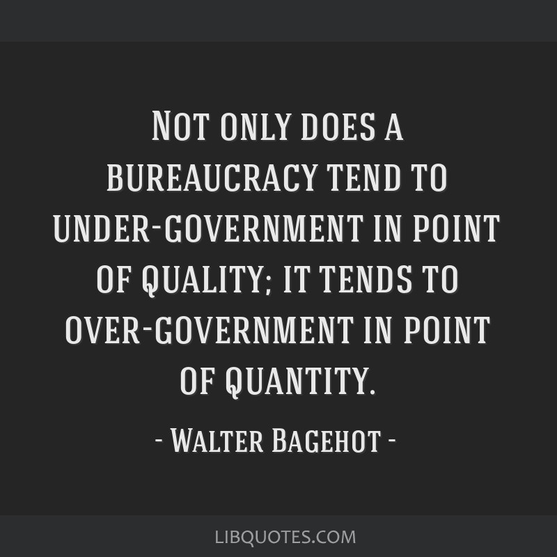 Not only does a bureaucracy tend to under-government in point of quality; it tends to over-government in point of quantity.