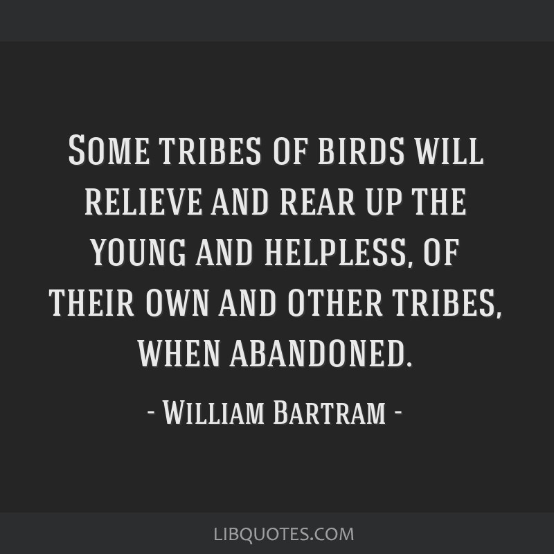 Some tribes of birds will relieve and rear up the young and helpless, of their own and other tribes, when abandoned.